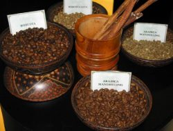 4 Jenis Kopi yang Tumbuh di Tanah Indonesia